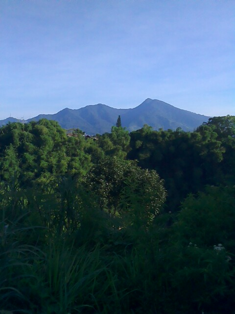 the peak gede mountain view